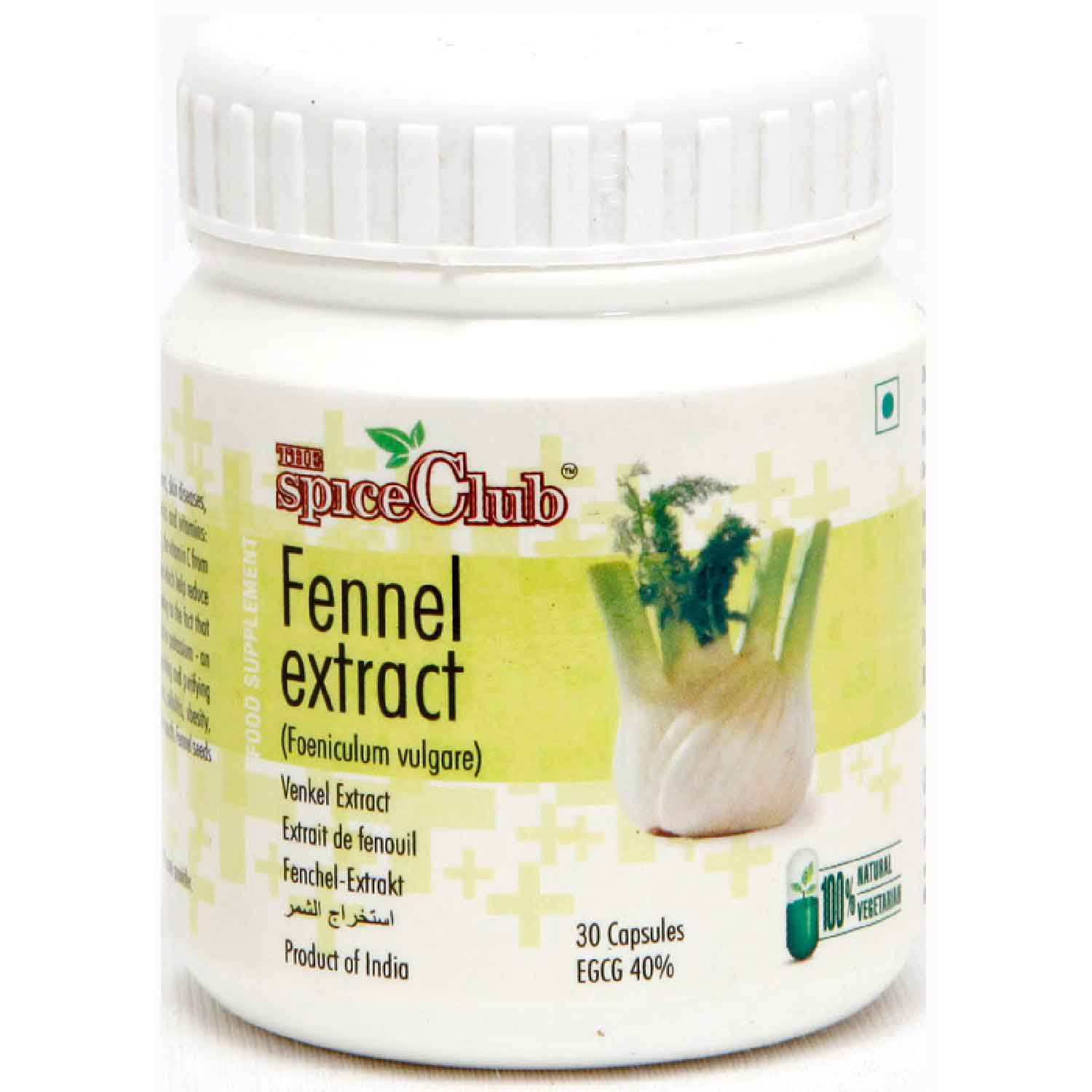 Fennel Extract 15gm